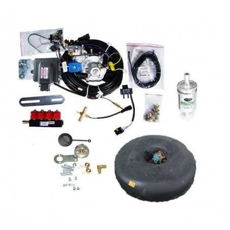 Газовые форсунки Tomasetto Mod. IT01
